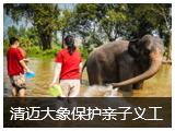 Thai——清迈大象保护亲子义工