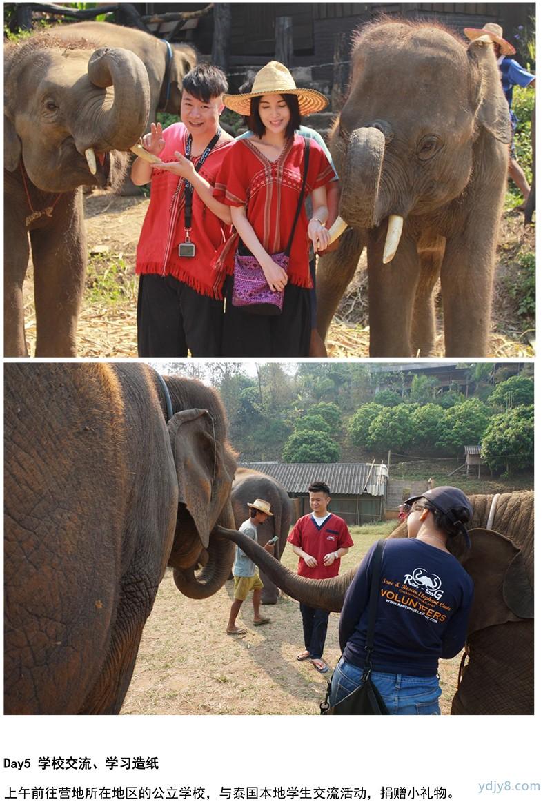 泰国清迈大象亲子义工-23