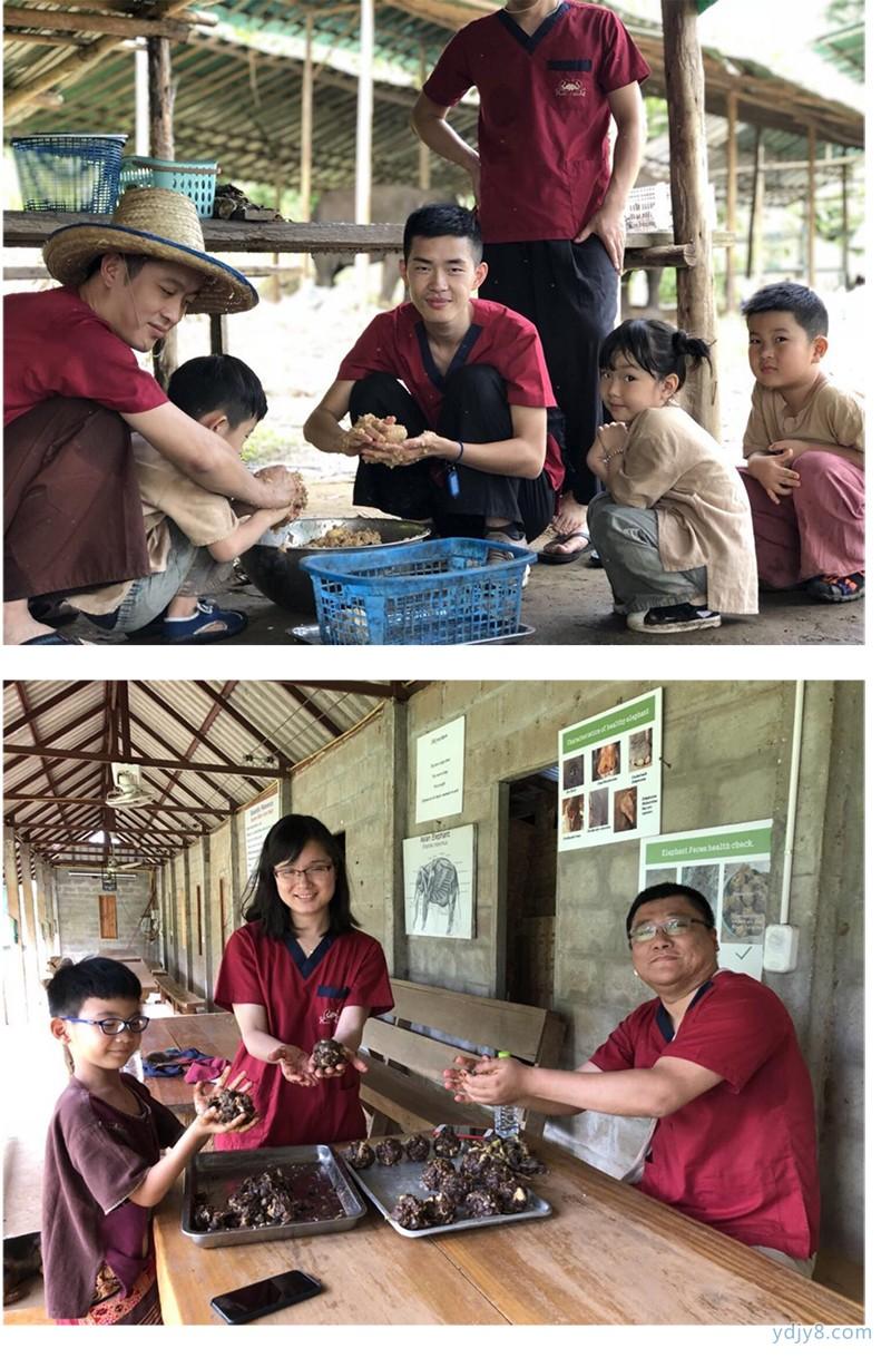 泰国清迈大象亲子义工-22